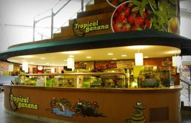 tropicalb-450x329-2